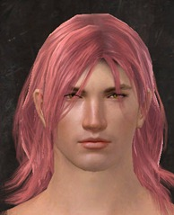 gw2-peach-hair-color-6
