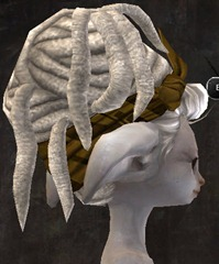 gw2-entanglement-hairstyles-asura-5