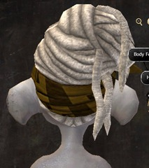gw2-entanglement-hairstyles-asura-6