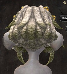 gw2-entanglement-hairstyles-asura-9