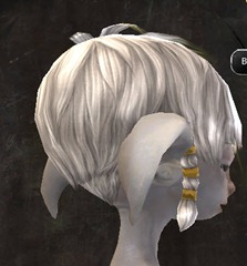 gw2-entanglement-hairstyles-asura-male-5