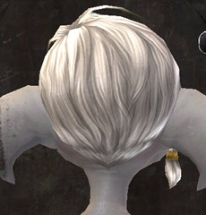 gw2-entanglement-hairstyles-asura-male-6