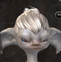 gw2-entanglement-hairstyles-asura-male-7