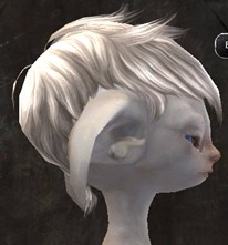 gw2-entanglement-hairstyles-asura-male-8
