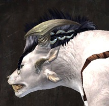 gw2-entanglement-hairstyles-charr-female-5