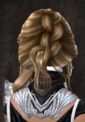 gw2-entanglement-hairstyles-human-female-3