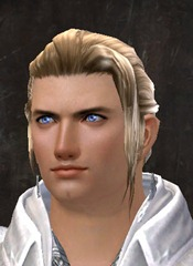 gw2-entanglement-hairstyles-human-male-4
