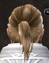 gw2-entanglement-hairstyles-human-male-6