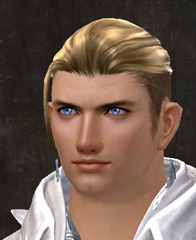 gw2-entanglement-hairstyles-human-male-7
