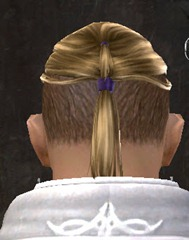 gw2-entanglement-hairstyles-human-male-9