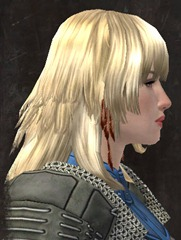 gw2-entanglement-hairstyles-norn-female-5