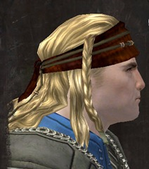 gw2-entanglement-hairstyles-norn-male-2