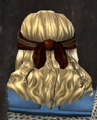 gw2-entanglement-hairstyles-norn-male-3