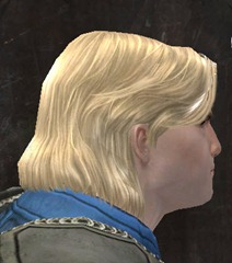 gw2-entanglement-hairstyles-norn-male-5