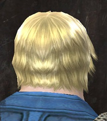 gw2-entanglement-hairstyles-norn-male-9