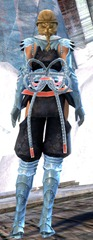 gw2-shadow-assassin-outfit-gemstore-human-female-2