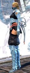 gw2-shadow-assassin-outfit-gemstore-human-female-3