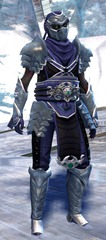 gw2-shadow-assassin-outfit-gemstore-sylvari-male