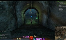gw2-rhand-blessed-plant-food-3