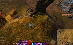 gw2-enchanted-map-scrap-3-diessa-plateau-2