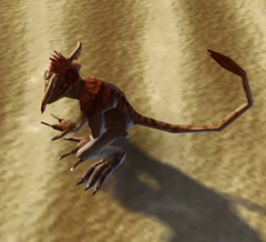 swtor-flamehair--kowakian-monkey-lizard-pet-2