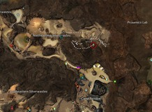 gw2-lost-badge-silverwastes-achievement-guide-54
