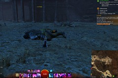 gw2-lost-badge-silverwastes-achievement-guide-55