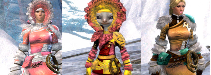 GW2 Arctic Explorer Outfit from Gemstore