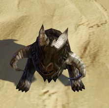 swtor-force-hound-pet