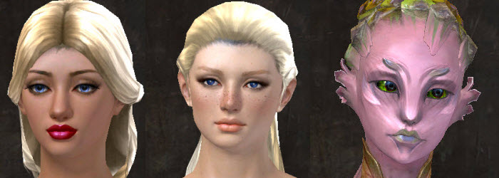 GW2 Gallery of New Faces in Makeover Kits