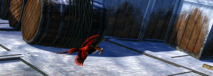 GW2 Snow Owl, Raven and Parrot Mail Carriers