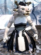 gw2-wedding-attire-charr-female-no-helm