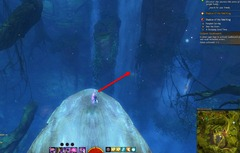 gw2-auric-basin-insight-the-falls-2