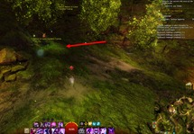 gw2-burnisher-quarry-hero-point-auric-basin-4