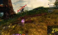 gw2-mellagan's-valor-strongbox-3