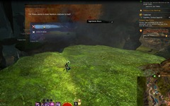 gw2-nightthistle-bloom-hero-point-tangled-depths-3