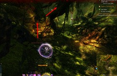 gw2-no-masks-left-behind-achievement-guide-morwood-wilds-4