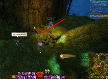 gw2-no-masks-left-behind-achievement-guide-tarnished-treetop-2
