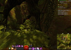 gw2-no-masks-left-behind-achievement-guide-the-falls