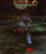 gw2-now-that's-a-fungus-achievement-3