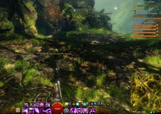 gw2-suspicious-orichalcum-hero-point-auric-basin-3