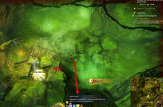 gw2-toxin-cured-hog-hero-point-auric-basin-3