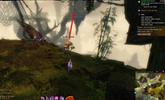 gw2-verdant-brinks-insight-canopy-over-pact-encampment-3