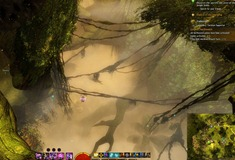 gw2-young-mushrooms-hero-point-auric-basin-3