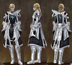 gw2-guild-armor-medium-female