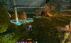 gw2-tangled-depths-insight-order-of-whispers-outpost-3