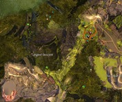 gw2-tangled-depths-insight-order-of-whispers-outpost