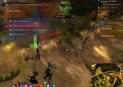 gw2-excellent-judge-of-character-verdant-brink-achievements-guide