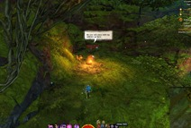 gw2-hidden-amphibian-auric-basin-achievement-guide-3