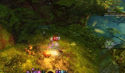 gw2-hidden-amphibian-auric-basin-achievement-guide-4